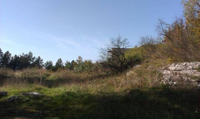 Roštilj s nećakom na brdu Humac (Otočac, 2014.) IMAG0517_1_zpsd20d17e3