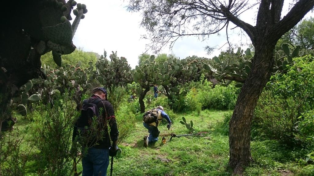 Hallazgos Últimos días en Aguascalientes y mi primera Macuquina!!! DSC_04911_zpsxg1w6gvs
