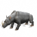 Rinoceronte Blanco [3lite vs. Erick Dreemurr] White%20Rhinoceros_zpskgzbya7k