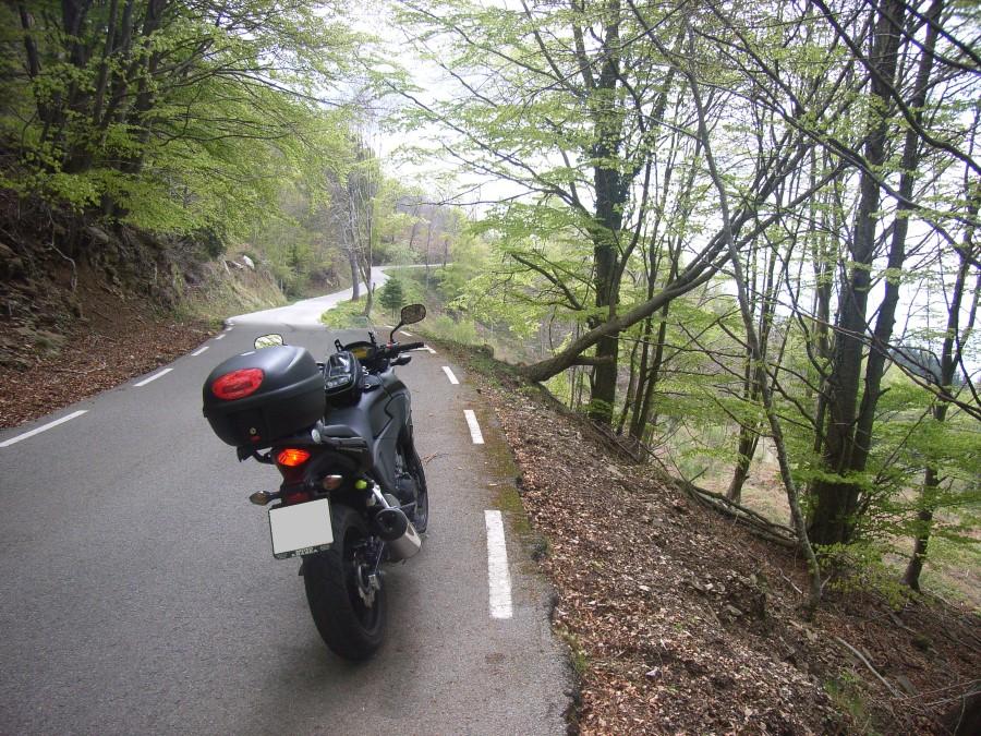 Que potito es el Montseny RIMG0003Custom_zpsda64782e