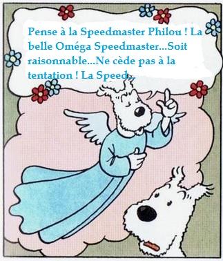 Petit Compte Rendu de Visite de la Première Bourse Horlogère de Villeneuve d'Ascq BonneC_zps536cbe98