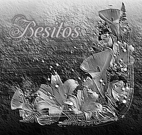 Calas Blanco y Negro  D74DtohhG2br_zpst56z6j5w