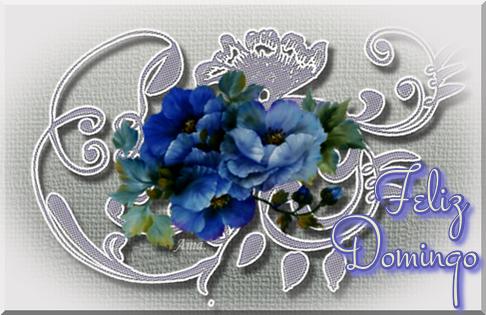 Flores Azules sobre Encaje Grisaceo DOMINGO_zpsfzgpw2j5