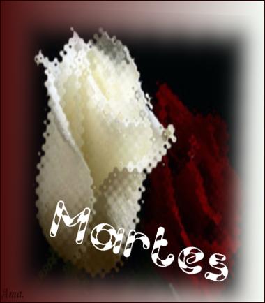 Bonitas rosas blanca y roja ISAHxhaxajn1_zpso7yb9lf0