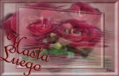 Rosas Punteadas Phasta%20luego_zps2lljwipb