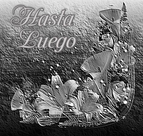 Calas Blanco y Negro  Tsvsa3UZSrZr_zpsg5x7jjq7
