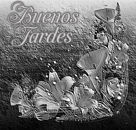 Calas Blanco y Negro  VuQbEb6YWyWs_zpsffgpy0ks