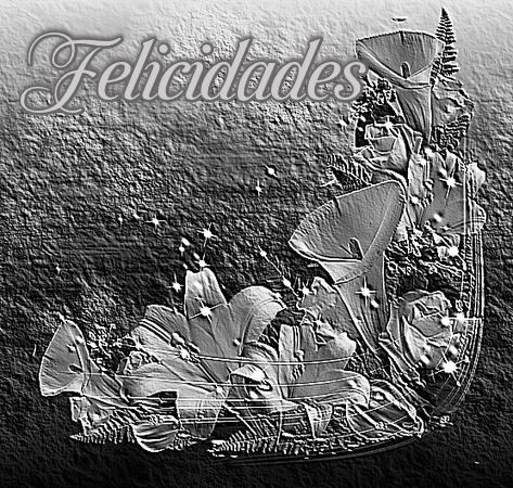 Calas Blanco y Negro  WRF9hJYPvlW1_zpspxjf8cem