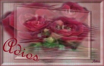 Rosas Punteadas Adios%202_zps8v6xqpbq