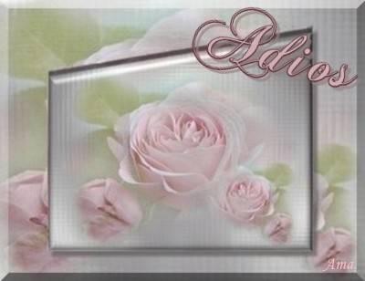Rosas Suavemente Esfumadas  Adios_zpsodfltxqs