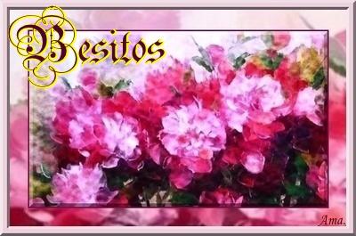 Peonias fucsias Besitos_zpscfelsq4u