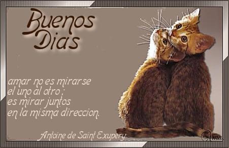 Duo de Gatitos con Frase Dias_zpsep1xi6iu