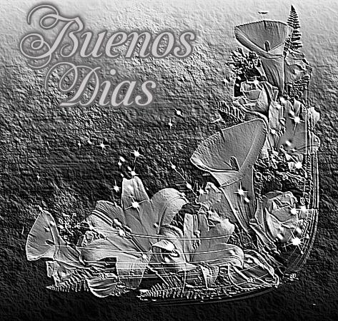 Calas Blanco y Negro  HNPIcm4BUdjl_zpsa0semj28