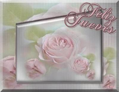 Rosas Suavemente Esfumadas  Jueves_zpsr3agthgx