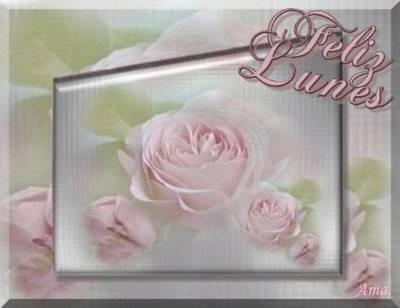 Rosas Suavemente Esfumadas  Lunes_zpsmrcgt6bp