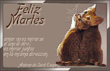 Duo de Gatitos con Frase Martes_zps0zyoziex