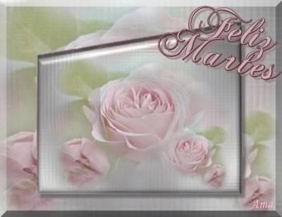 Rosas Suavemente Esfumadas  Martes_zpsmf5axbi4