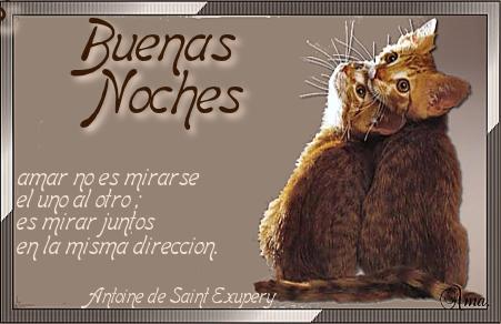Duo de Gatitos con Frase Noches_zps9oaqaxdy