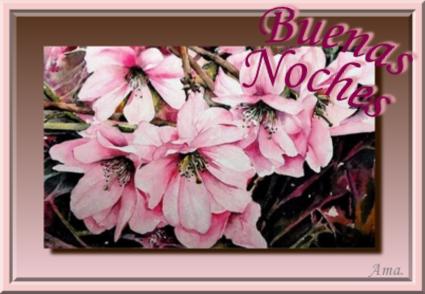 Rosas Chinas  Noches_zpsefo9wu3x