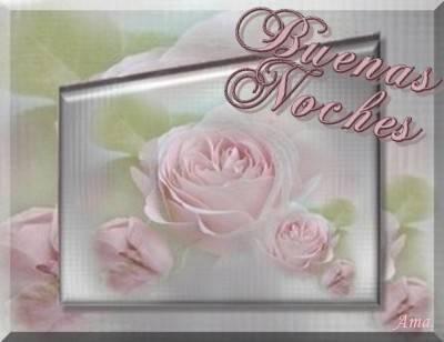 Rosas Suavemente Esfumadas  Noches_zpsv43st18c