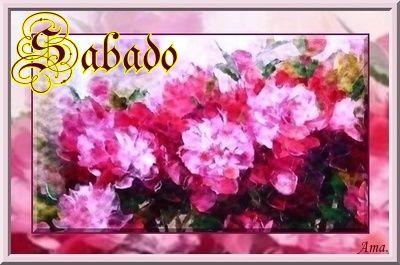 Peonias fucsias Sabado_zps7wls4gt6