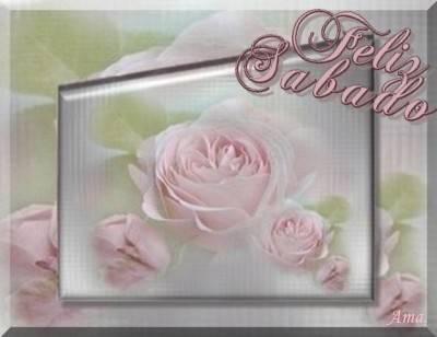 Rosas Suavemente Esfumadas  Sabado_zpstbjqzx5d