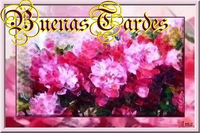 Peonias fucsias Tardes_zpslqa15s7u