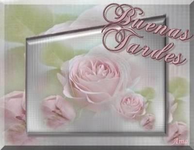 Rosas Suavemente Esfumadas  Tardes_zpsoghg7jol