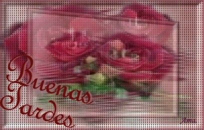 Rosas Punteadas Tardes_zpsvepzo9wq