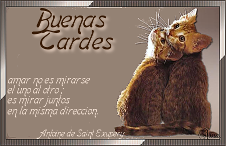 Duo de Gatitos con Frase Tardes_zpsyqaubx0l