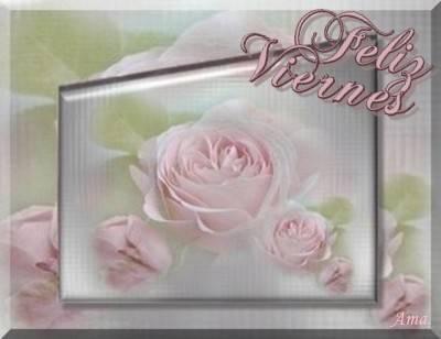Rosas Suavemente Esfumadas  Viernes_zpspgch5uok