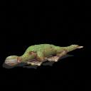 El mundo A.D. (Antes de los dinosaurios) SporeHynerpeton_zpsb8fec212
