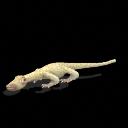 El mundo A.D. (Antes de los dinosaurios) - Página 2 SporeMillereta_zps8c3c1b62