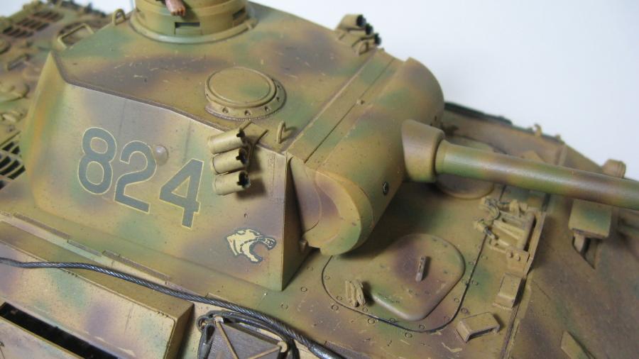 Panther auf D opération Citadel IMG_6411_3_zps5n0vjy4c