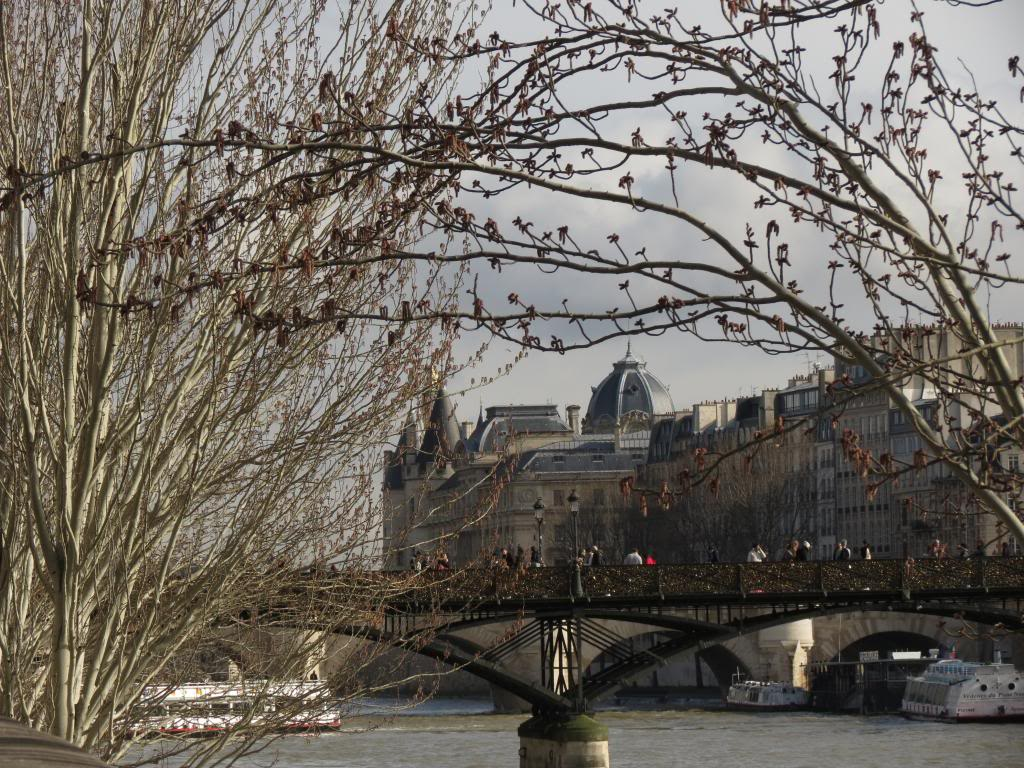 Séjour magique à Paris du 22 Février au 1er Mars  - Page 11 IMG_3829_zpse0c7865c