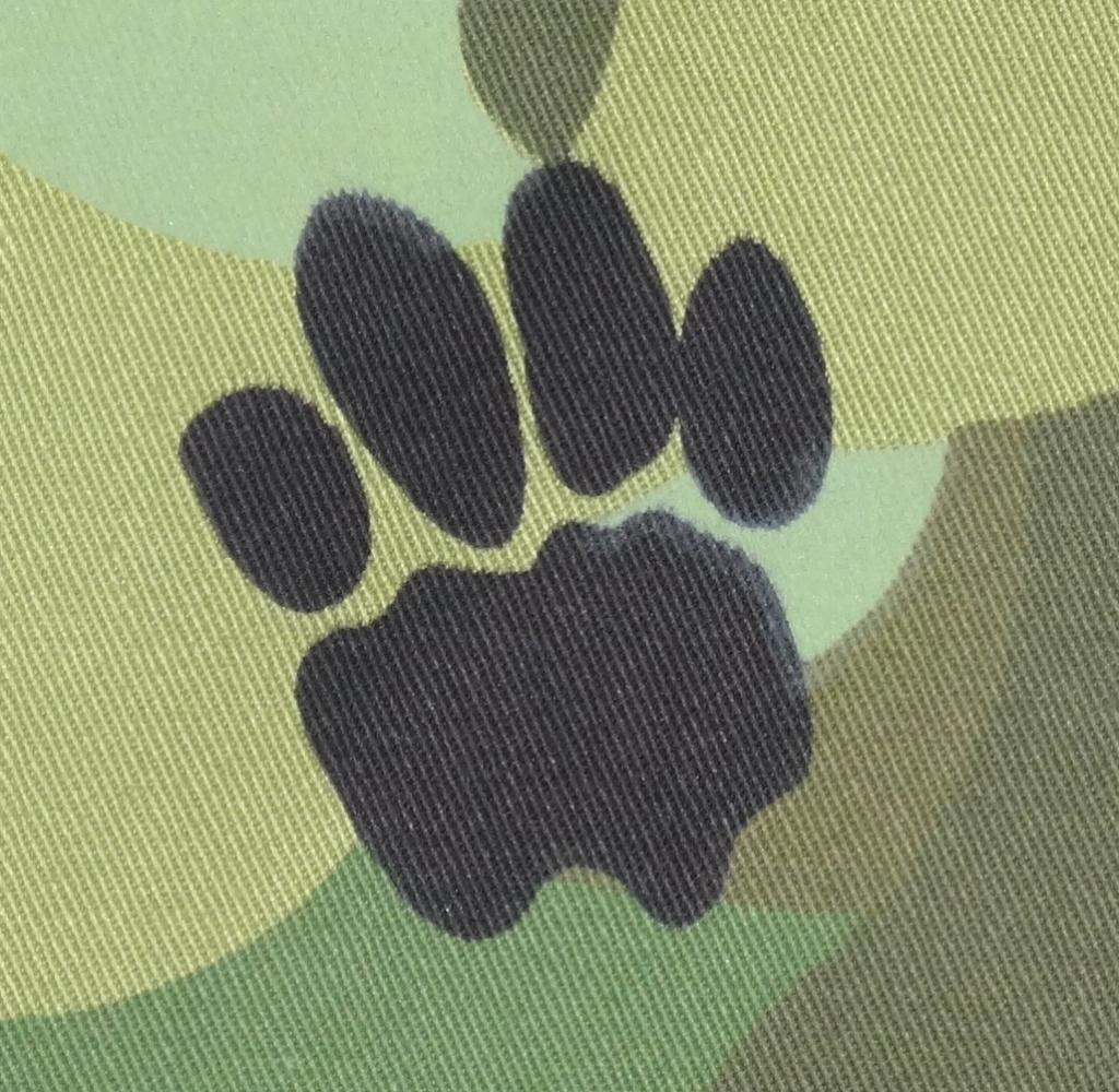 Benin - Wildlife Camouflage BeninWildlifeGuardsPaw_zps1de62c6e