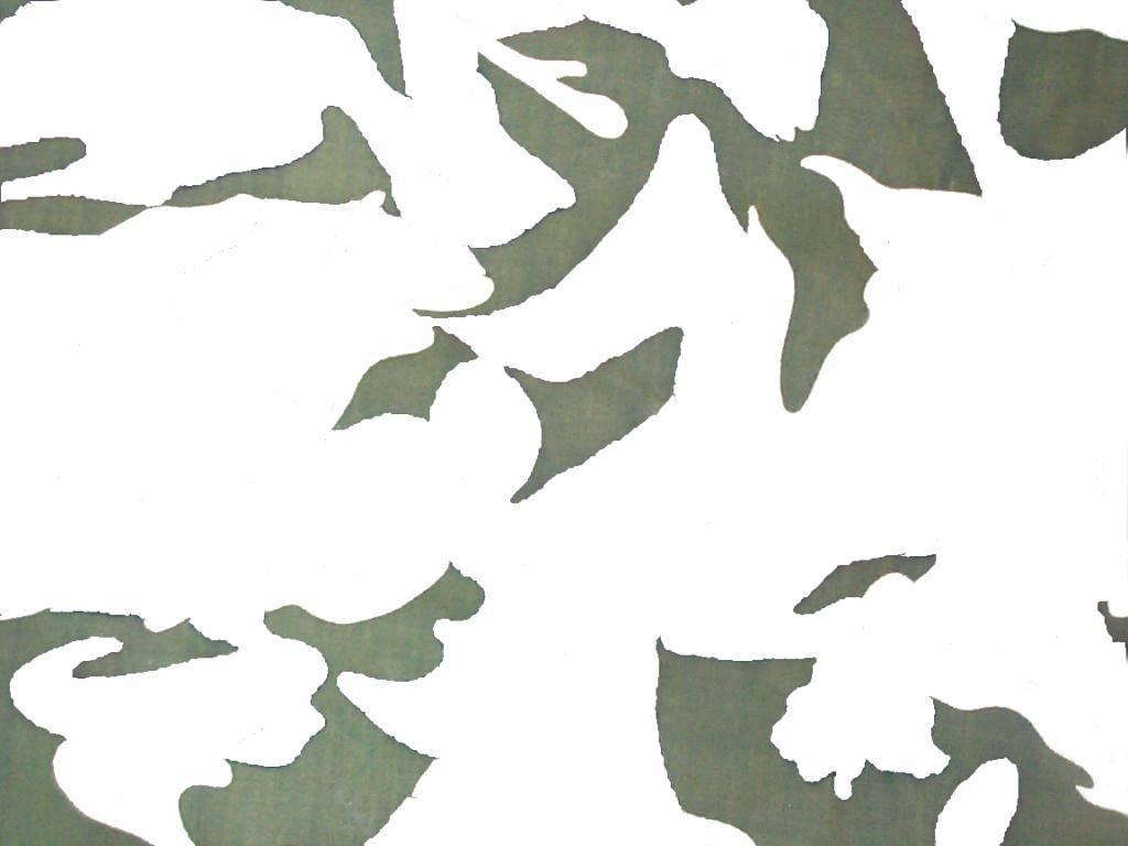 Camo Pattern Deconstruction / Guess the Pattern (1) Pattern1-green_zps9b5049c5