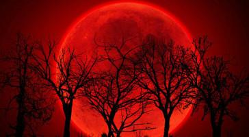 Profecía de la luna de sangre (Privado) 0redmoon-728x400_zpscmnnhczi