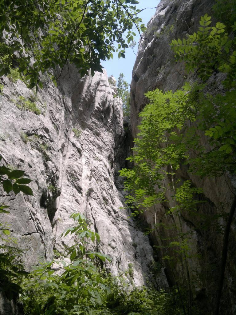 20 dana Velebita - Page 2 2014-07-26-4573_zps3d346e29