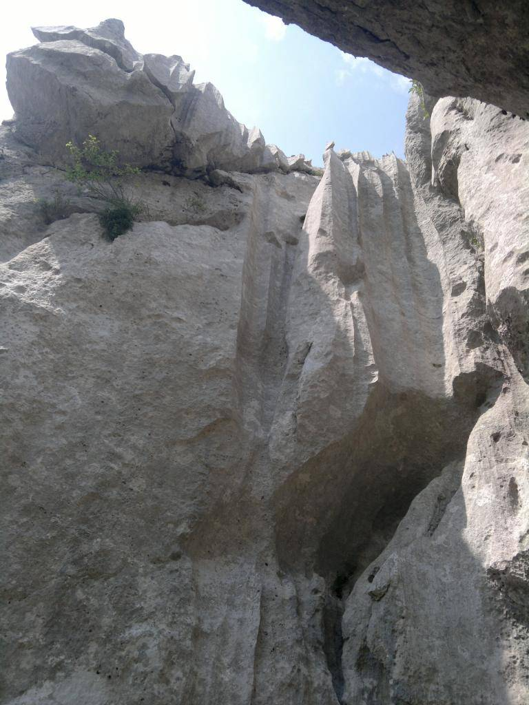 20 dana Velebita - Page 2 2014-07-26-4582_zps9dbfe400