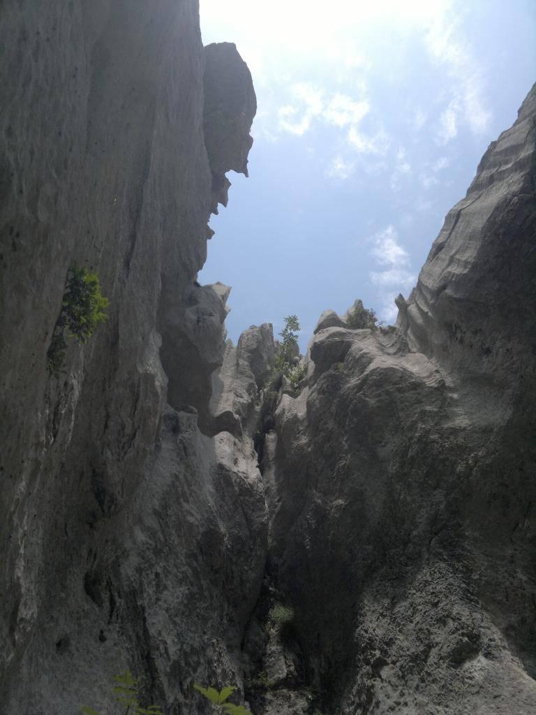 20 dana Velebita - Page 2 2014-07-26-4593_zpsc8f9c627