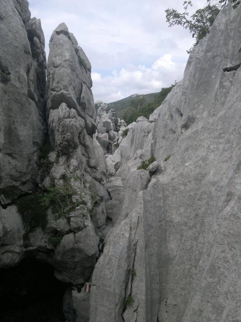 20 dana Velebita - Page 2 2014-07-26-4600_zps3a67ac62