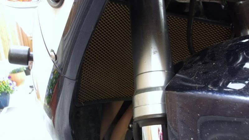 My 929 Fireblade RadGrille01