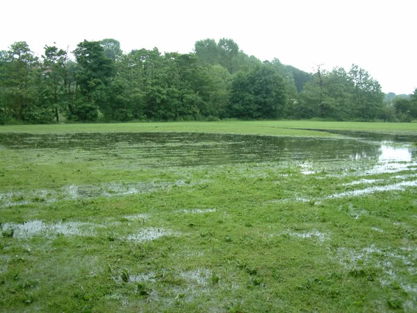 FieldFlood.jpg The field under water image by amaqqut