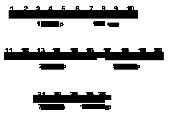 [Guía] Niveles y Experiencia Tabladeexp_zpse5ruraib