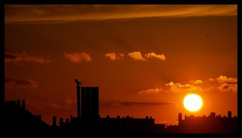 le soleil disparaît au-dessous de l'horizon en ville CopyofP4300800-3