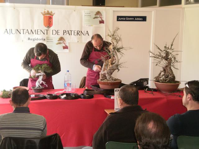 IV Exposición Bonsai Paterna 03