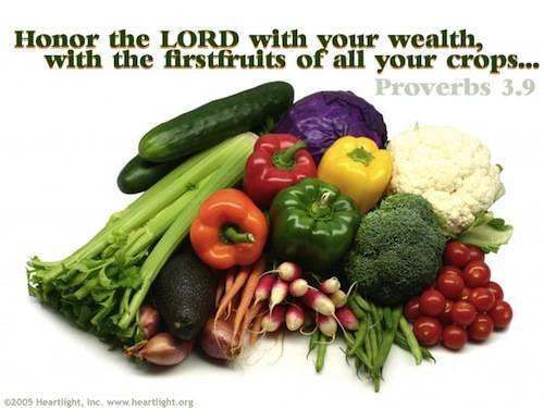 CHRONOLOGIC BIBLE Proverbs3_9
