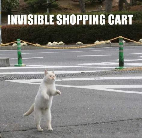 Curiosidades Y Bromas. Invisibleshoppingcart