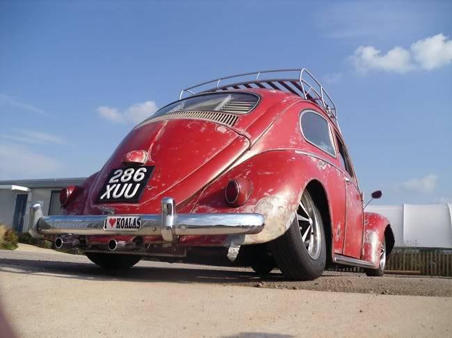 Bella - 1958 Australian Beetle - Page 24 150DSCI0038hj